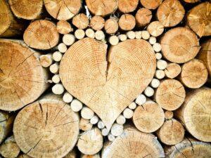 L'assegnazione del diritto di uso civico di legnatico è subordinate a limitazioni quantitative (ad es. un massimo di mc per ogni nucleo famigliare) e temporali (es. un tot di legname ogni 5 o 10 anni).