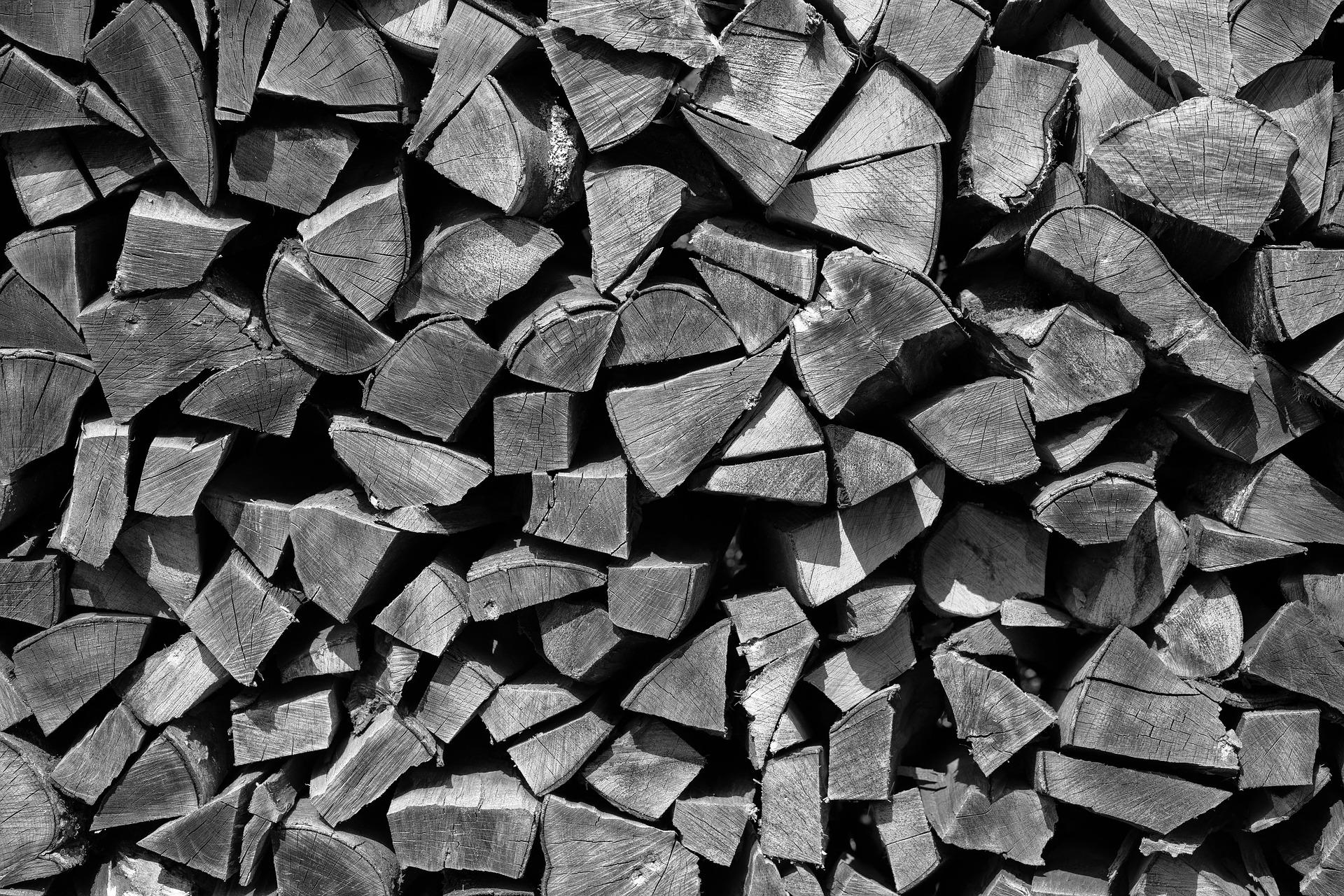 Il diritto di legnatico è il diritto di un determinato soggetto, appartenente ad una specifica comunità, di fare la legna per i bisogni propri e della propria famiglia o per uso commerciale.